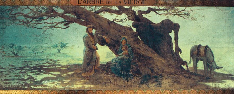 Tree of the Virgin.