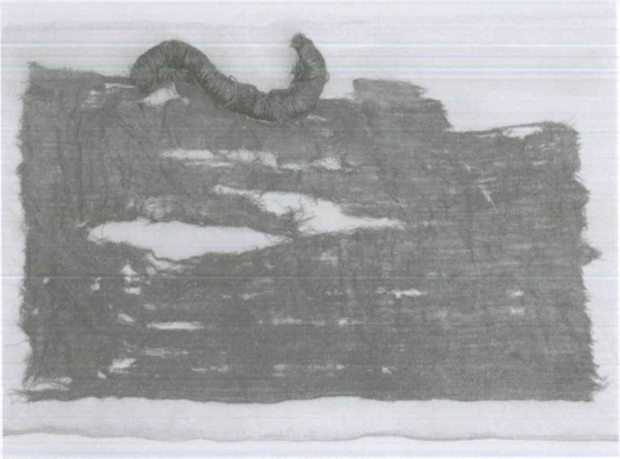 Fig. 20.5. A girl's veil. © Harald Froschauer.